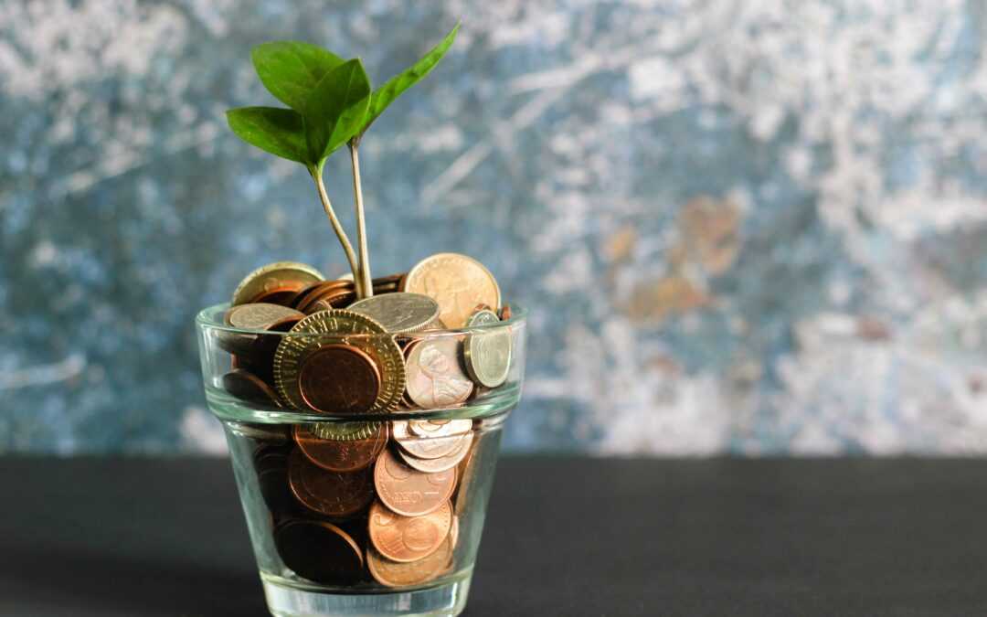 Making Your CBO More Financially Viable